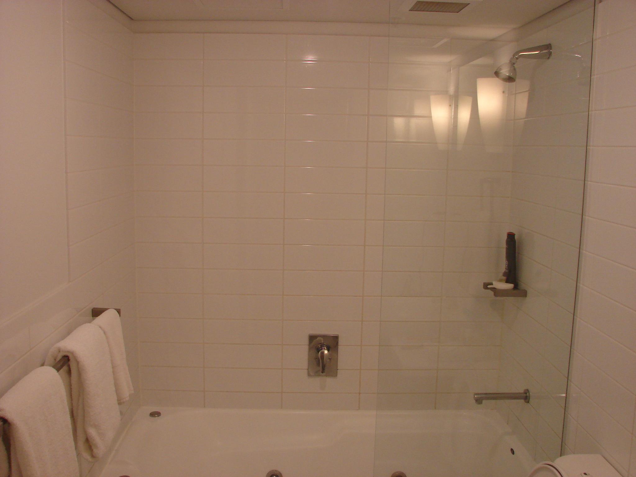 Mother Ideas European Shower Doors European Shower Door Style