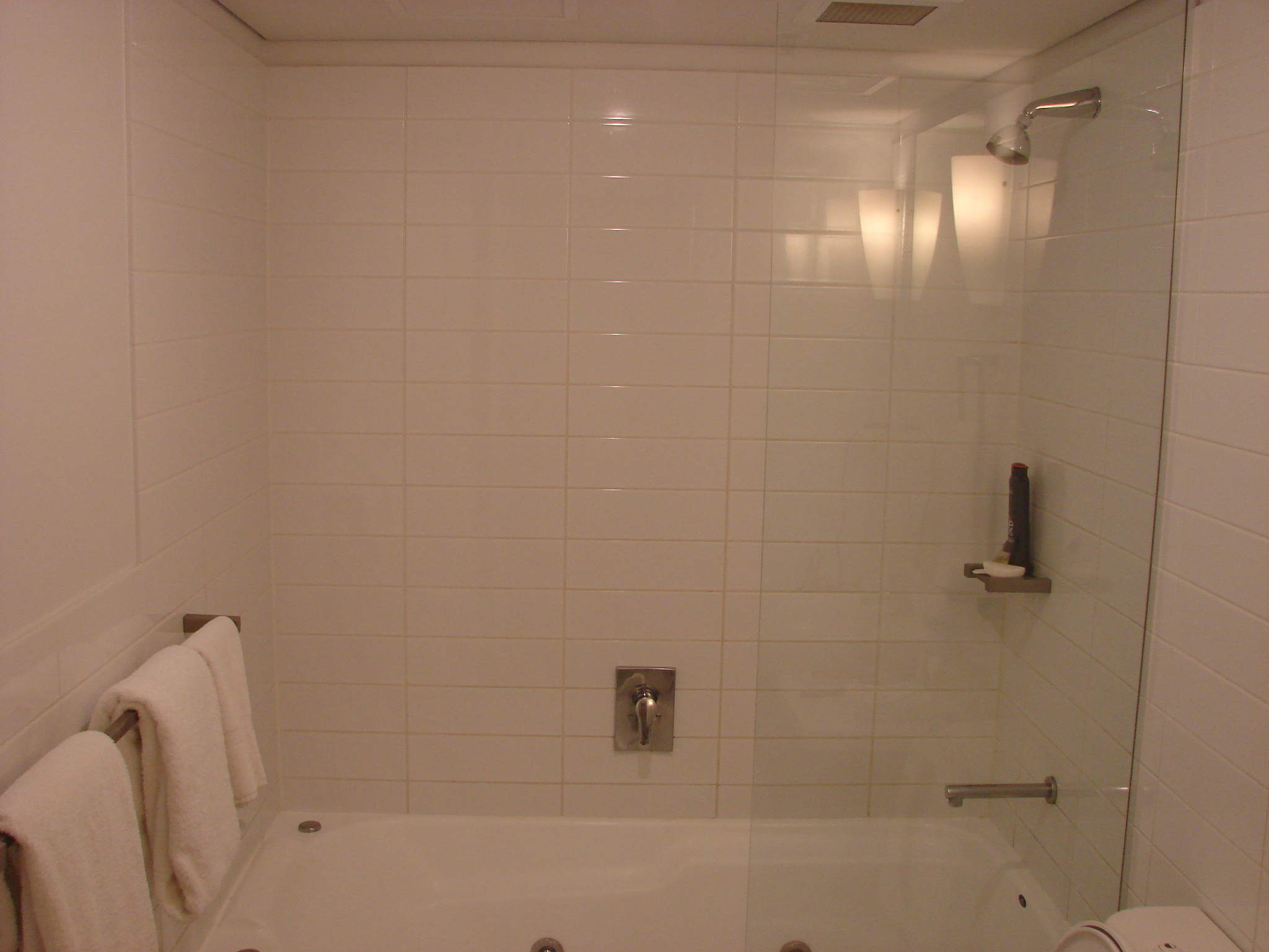 Mother Ideas: European Shower Doors, European Shower Doors | Utah ...