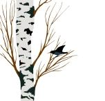starling on birch drawing
